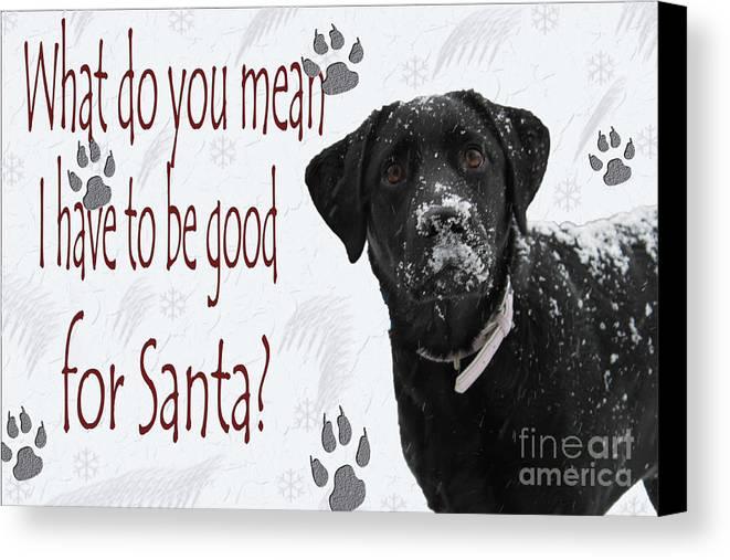Cathy Beharriell Canvas Print featuring the photograph Good For Santa by Cathy Beharriell