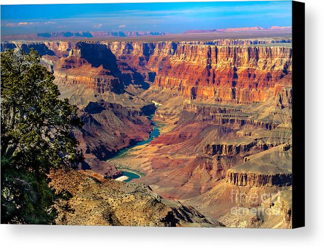 Grand Canyon Canvas Print featuring the photograph Grand Canyon Sunset by Robert Bales