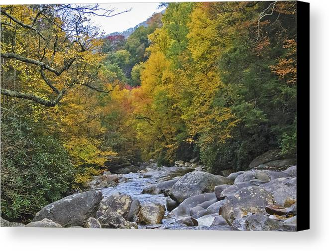 Tennessee Canvas Print featuring the photograph Great Smoky Mountains Creek 3 by Tina Cannon