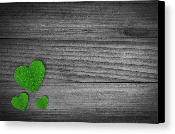 Bio Canvas Print featuring the photograph Green Pedal Shaped Hearts by Aged Pixel