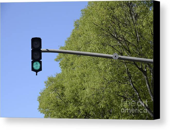 Authority Canvas Print featuring the photograph Green Traffic Light By Trees by Sami Sarkis