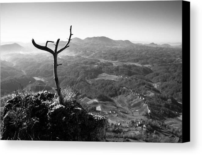 Landscapes Canvas Print featuring the photograph Guardian by Davorin Mance