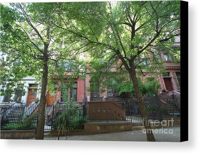Harlem Canvas Print featuring the photograph Hamilton Heights Green by Steven Spak