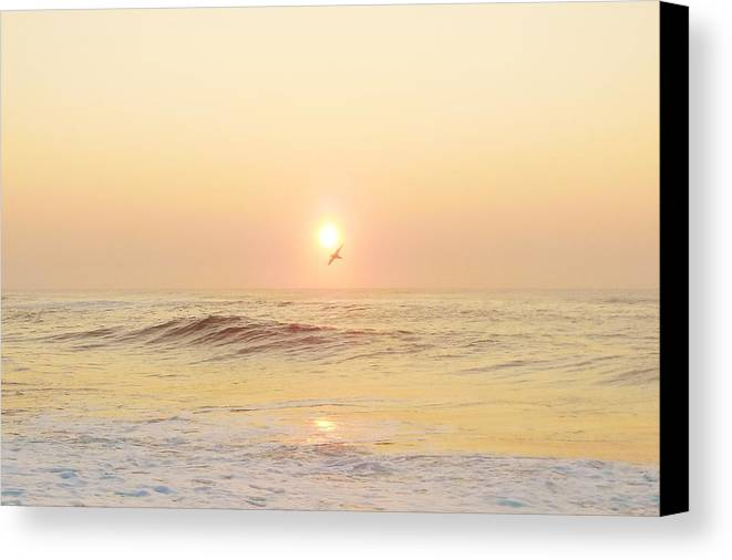 Mark Lemmon Cape Hatteras Nc The Outer Banks Photographer Subjects From Sunrise Canvas Print featuring the photograph Hatteras Sunrise 7 8/6 by Mark Lemmon
