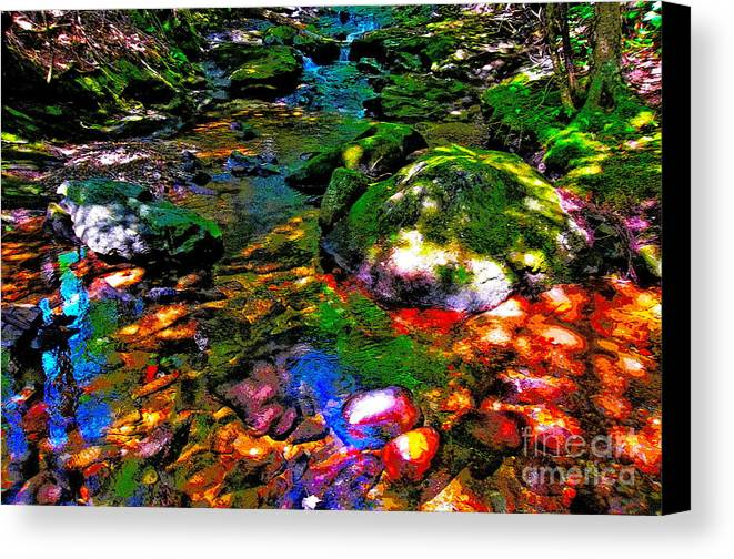 Landscape Canvas Print featuring the photograph Hcbyb 279 by George Ramos