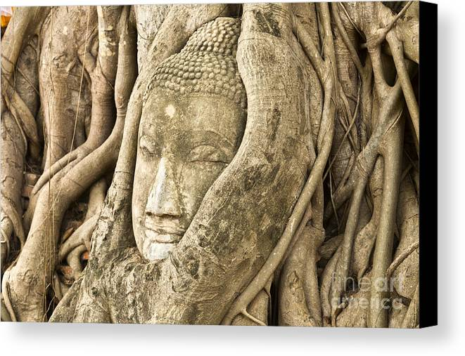 Ancient Canvas Print featuring the photograph Head Of Buddha Ayutthaya Thailand by Colin and Linda McKie