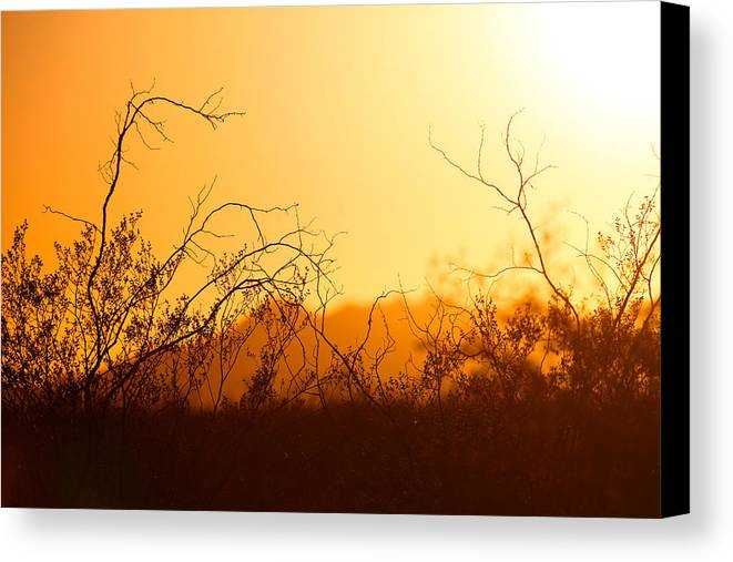 Heat Canvas Print featuring the photograph Heat Of The Day by Brad Brizek