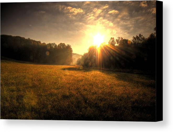 Todd Carter Here Comes The Sun Sky Field Black Orange Blue Violet Brown Tree Line Trees Weed Weeds Light Rays Orb Orbs Early Morning Rising Canvas Print featuring the photograph Here Comes The Sun by Todd Carter
