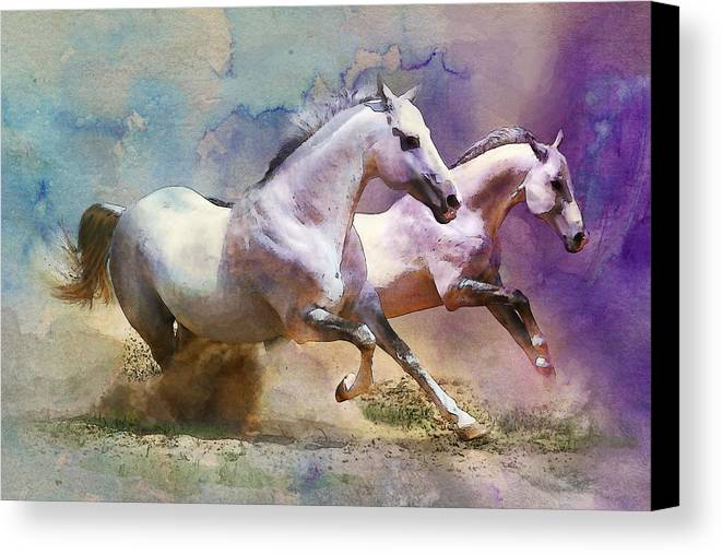 Horse Canvas Print featuring the painting Horse Paintings 004 by Catf