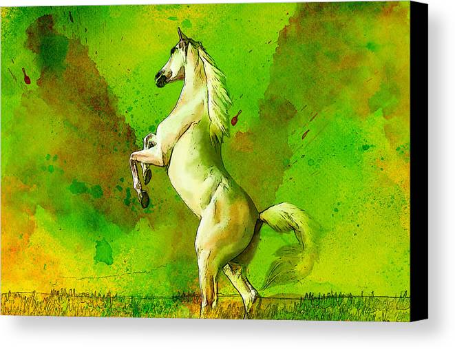 Horse Canvas Print featuring the painting Horse Paintings 010 by Catf