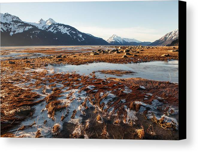 Chilkat Inlet Canvas Print featuring the photograph Ice And Sun by Michele Cornelius