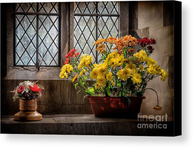 British Canvas Print featuring the photograph In The Light by Adrian Evans