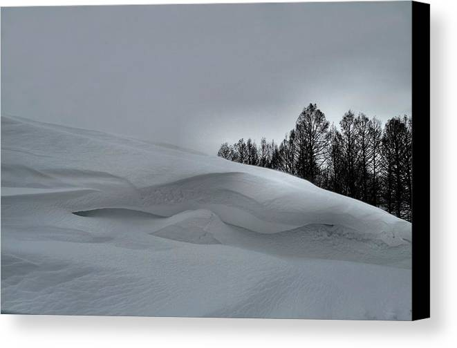 Snow Drifts Canvas Print featuring the photograph Indiana Drifter by Julie Dant