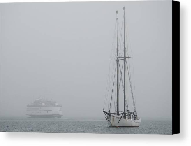 Fog Canvas Print featuring the photograph Into The Fog by Steve Myrick