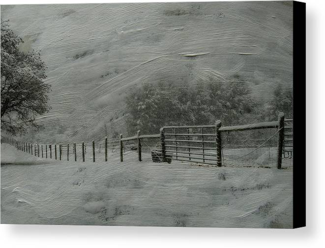 Snow Canvas Print featuring the photograph January Storm by Kathy Jennings