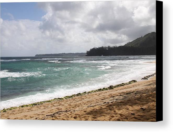 Nature Canvas Print featuring the photograph Kauai Shore Looking South by Dick Willis