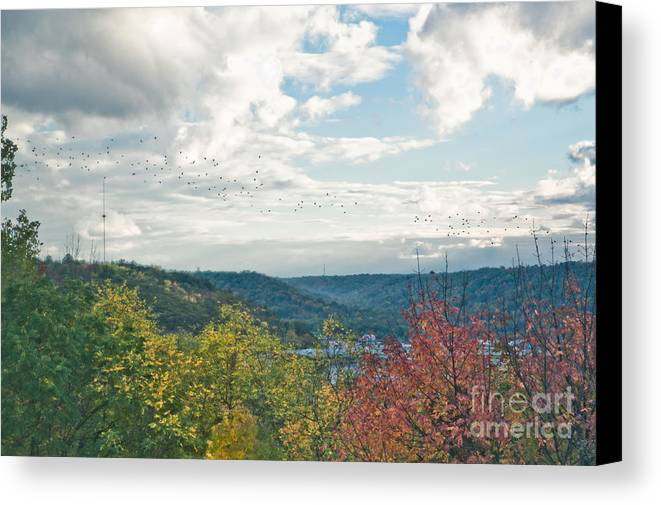 Birds Canvas Print featuring the photograph Kentucky Mountains In Autumn by Anne Kitzman
