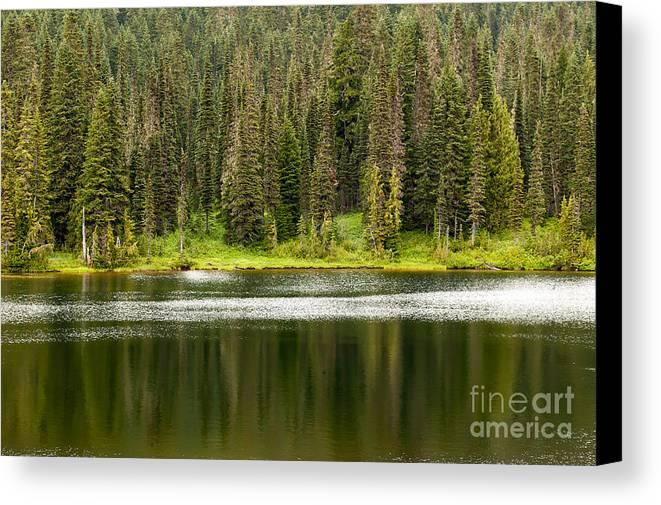 Mt Rainer National Park Canvas Print featuring the photograph Lake In Mt Rainer National Park by John Gaffen