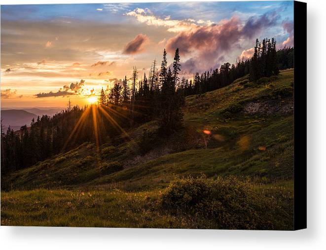 Last Light At Cedar Canvas Print featuring the photograph Last Light At Cedar by Chad Dutson