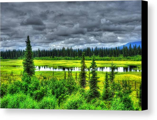Alaska Canvas Print featuring the photograph Light Before The Storm by Dennis Blum