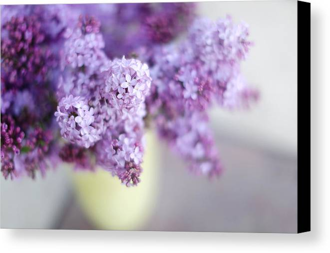 Lilacs Canvas Print featuring the photograph Lilacs In A Vase by Rebecca Cozart