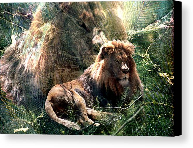 Lion Canvas Print featuring the digital art Lion Spirit by Lisa Yount