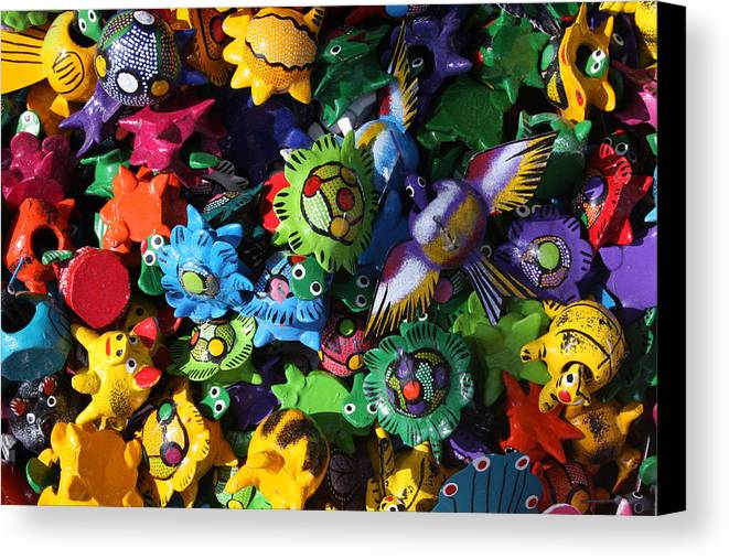 Mexico Canvas Print featuring the photograph Little Critters Playa Del Carmen Mexico by Lee Vanderwalker