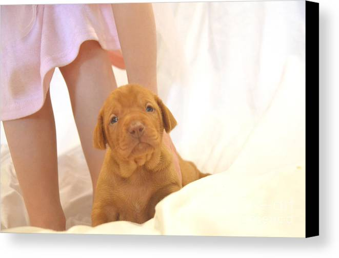 Dog Canvas Print featuring the photograph Little Dancer And Her Puppy by Jessica Culver