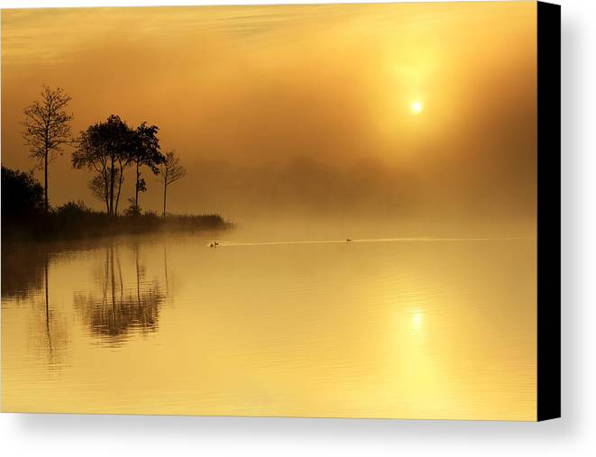 Loch Ard Canvas Print featuring the photograph Loch Ard Morning Glow by Grant Glendinning