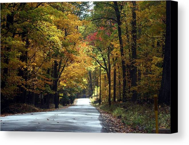 Fall Canvas Print featuring the photograph Lynn Run Pa by Denise Moore