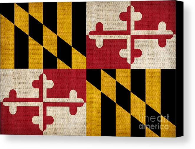 Maryland Canvas Print featuring the painting Maryland State Flag by Pixel Chimp