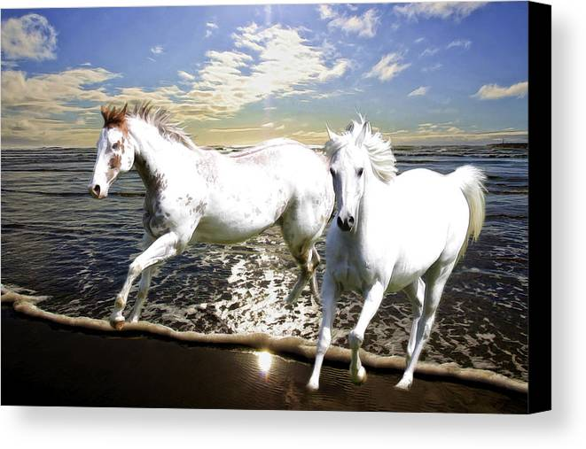 Horses Canvas Print featuring the photograph Midnight Run II by Athena Mckinzie