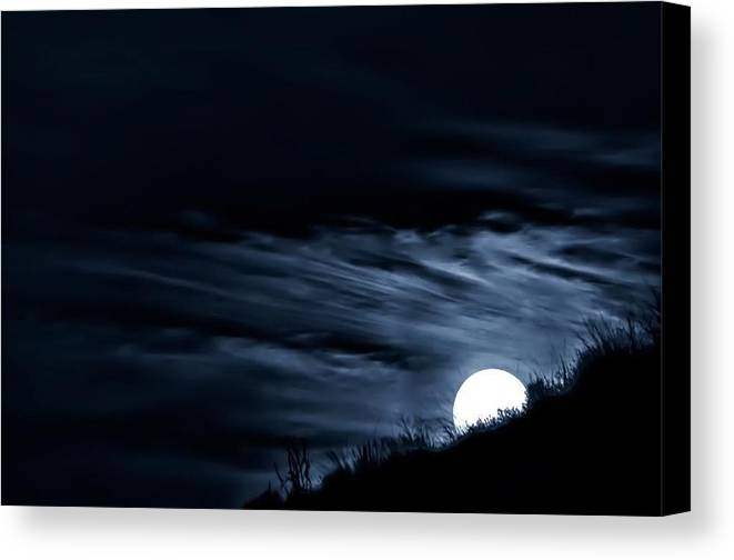 Landscape Canvas Print featuring the photograph Moonstruck by Pourya Madadi