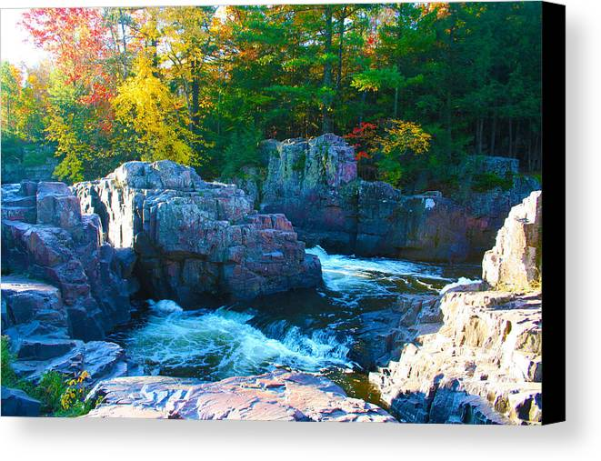 Eau Claire Dells Canvas Print featuring the photograph Morning In Eau Claire Dells by Tiffany Erdman