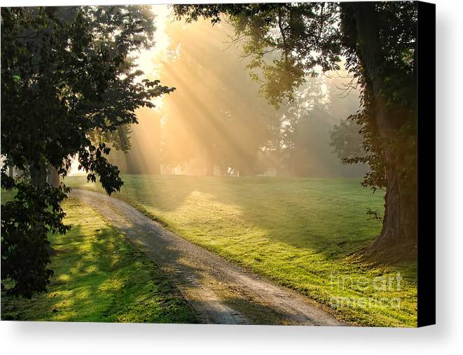 Country Canvas Print featuring the photograph Morning On Country Road by Olivier Le Queinec