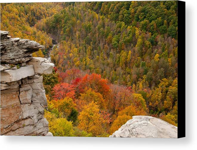West Canvas Print featuring the photograph Mountain Momma by Jim Southwell