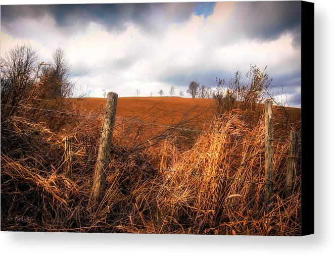 Landscape Canvas Print featuring the photograph Mountain Pasture by Bob Orsillo