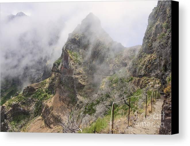 Madeira Canvas Print featuring the photograph Mountain Path by Mariusz Sprawnik