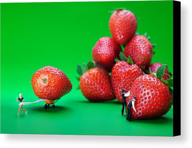 Physics Canvas Print featuring the photograph Moving Strawberries To Depict Friction Food Physics by Paul Ge