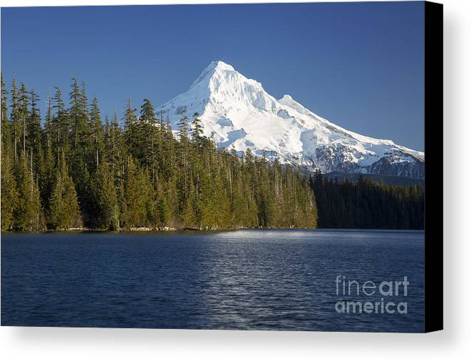 America Canvas Print featuring the photograph Mt Hood And Lost Lake by Brian Jannsen