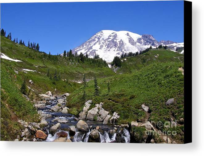 Photography Canvas Print featuring the photograph Myrtle Creek by Sean Griffin