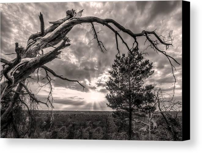 Clouds Canvas Print featuring the photograph Natures Arch by Debra and Dave Vanderlaan