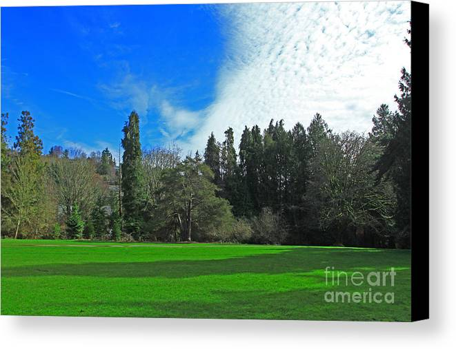 Park Canvas Print featuring the photograph Nice Day In The Park by Yuri Levchenko
