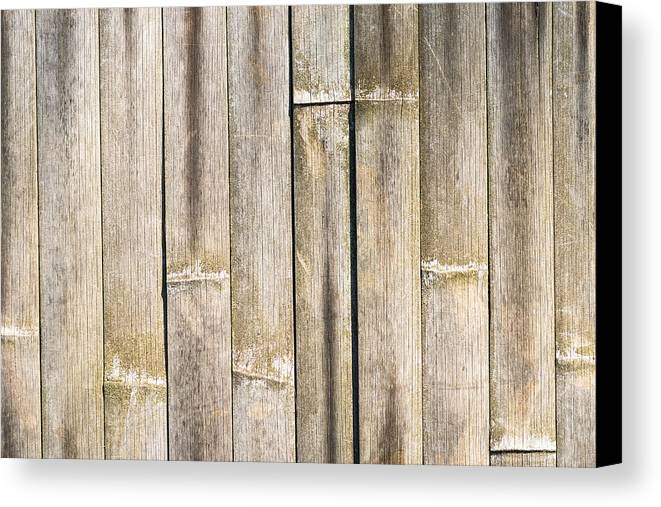 Bamboo Canvas Print featuring the photograph Old Bamboo Fence by Alexander Senin