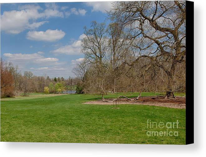 Elm Canvas Print featuring the photograph Old Elm Haverford College by Kay Pickens