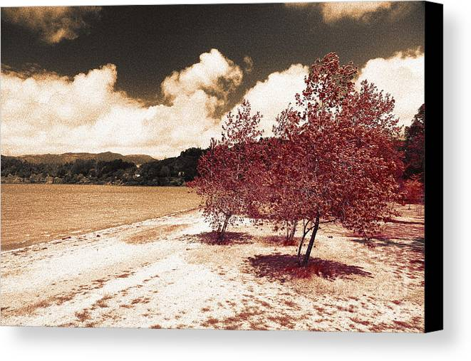 Landscape Canvas Print featuring the photograph On The Lake Shore by Gaspar Avila