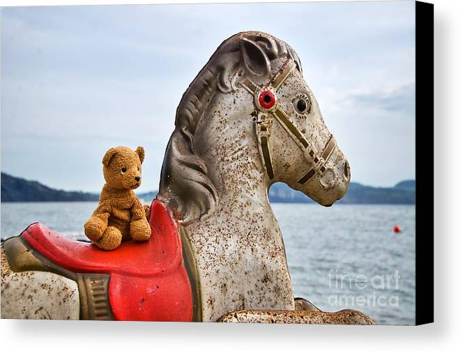 Teddy Canvas Print featuring the photograph On White Horses Snow White Horses Let Me Ride Away by Susie Peek