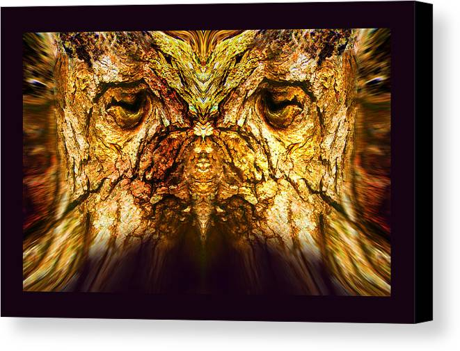 Faces Canvas Print featuring the photograph Owl Tree by Oliver Norden