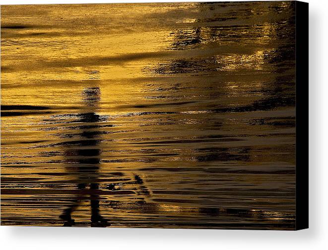 American Canvas Print featuring the photograph Painted Flow 19 by Arj Munoz