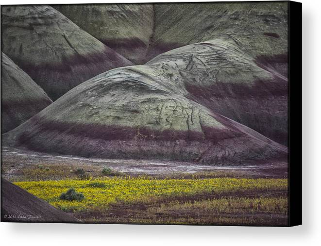 Hills Canvas Print featuring the photograph Painted Hills Bloom by Erika Fawcett